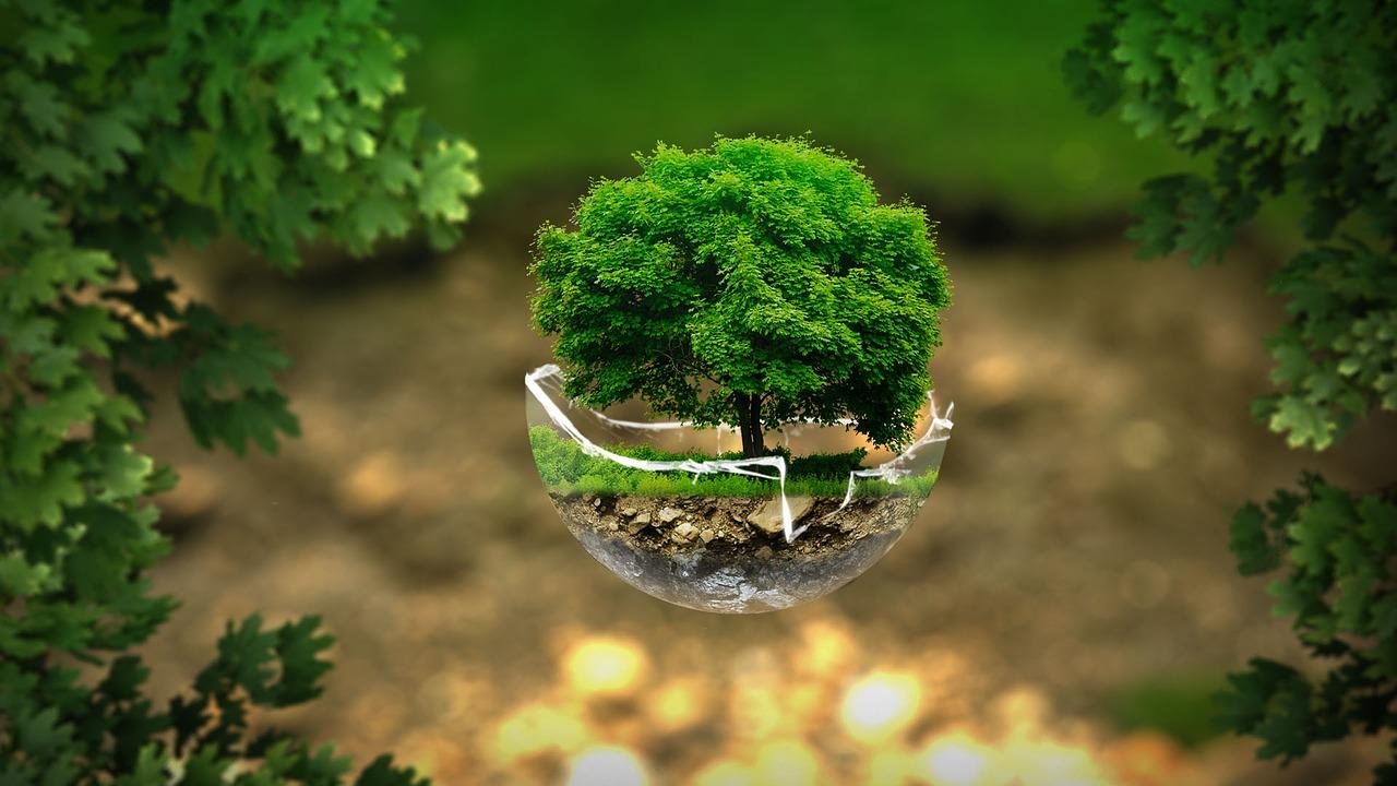 Как защитить природу от загрязнения