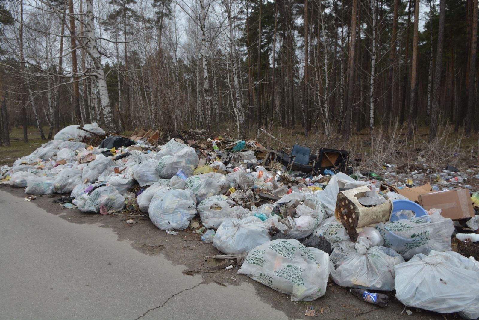 Горы пластика и мусора
