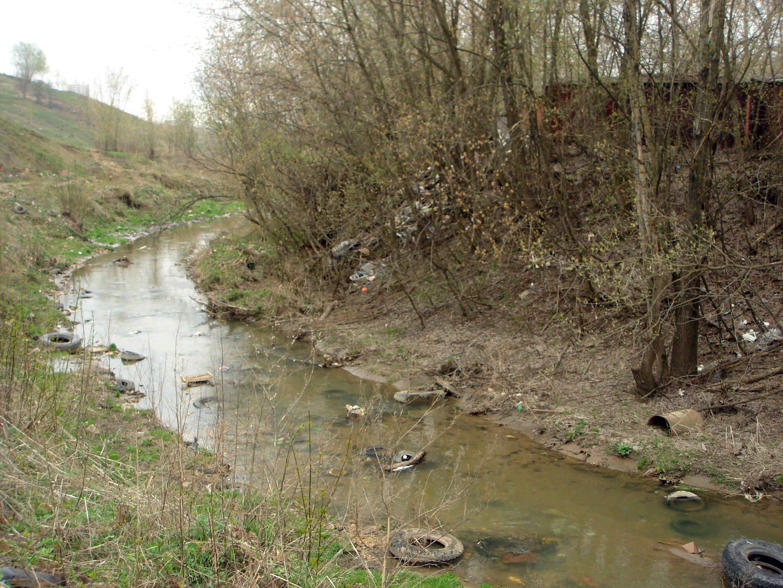 Региональные экологические проблемы