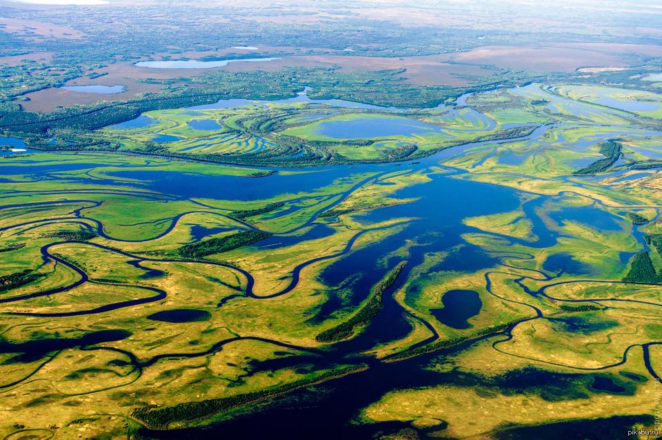 Причины экологических проблем Западно-Сибирской равнины