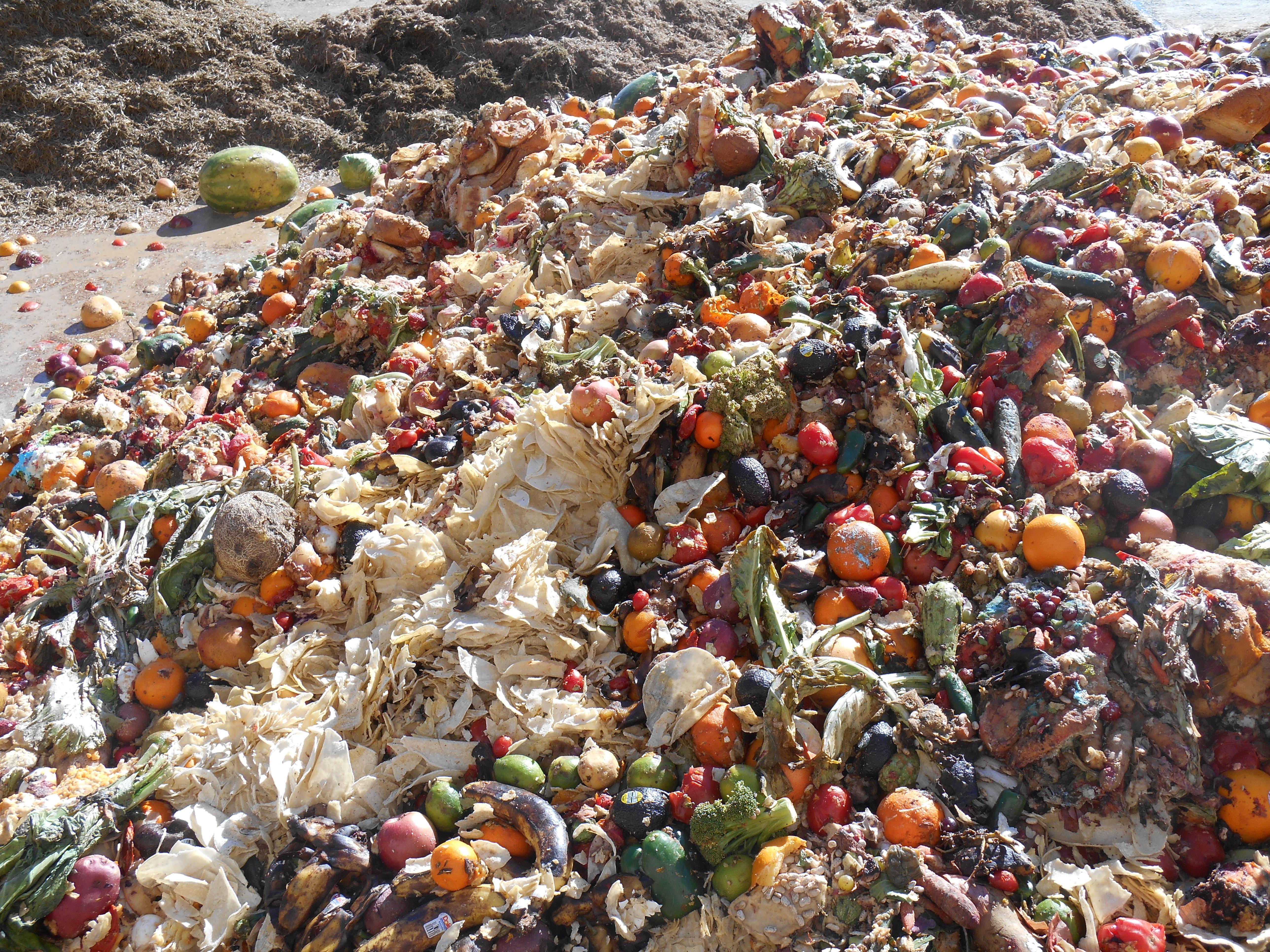 отходы растениеводства