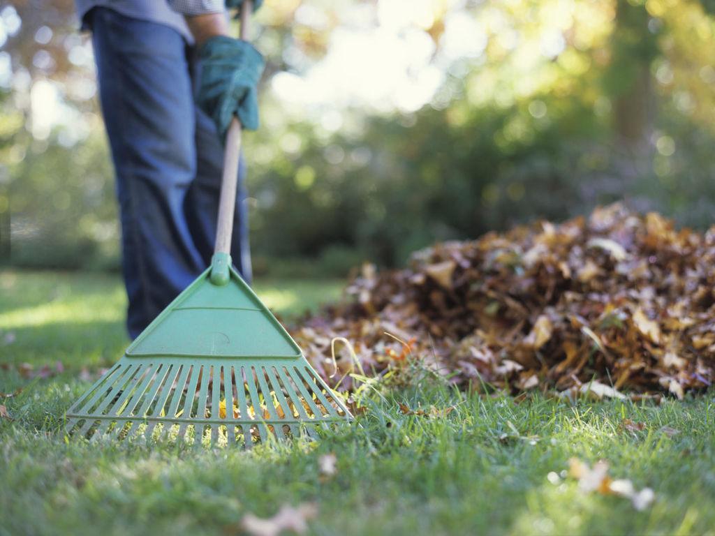 Осенняя уборка участка