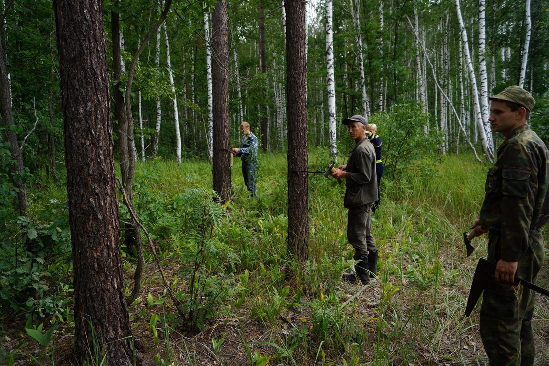 охрана леса