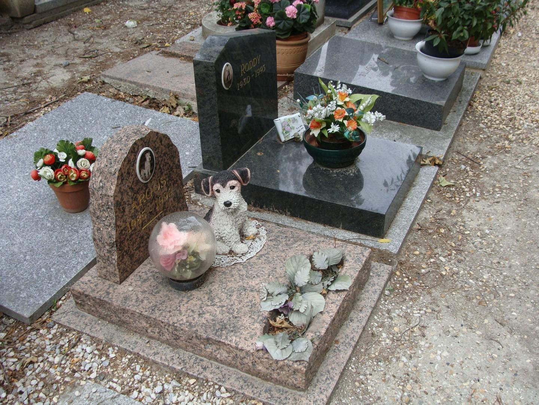 Кладбище-собак