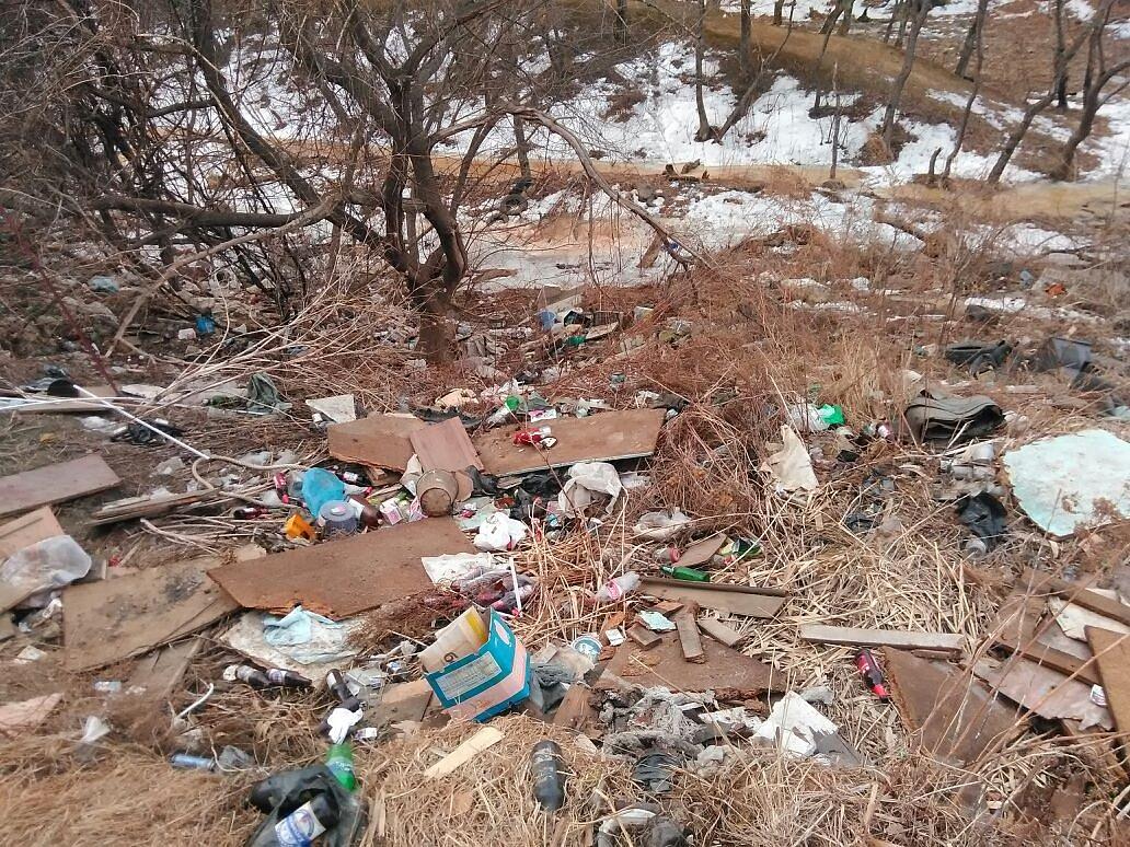 Склады мусора загрязняют природу