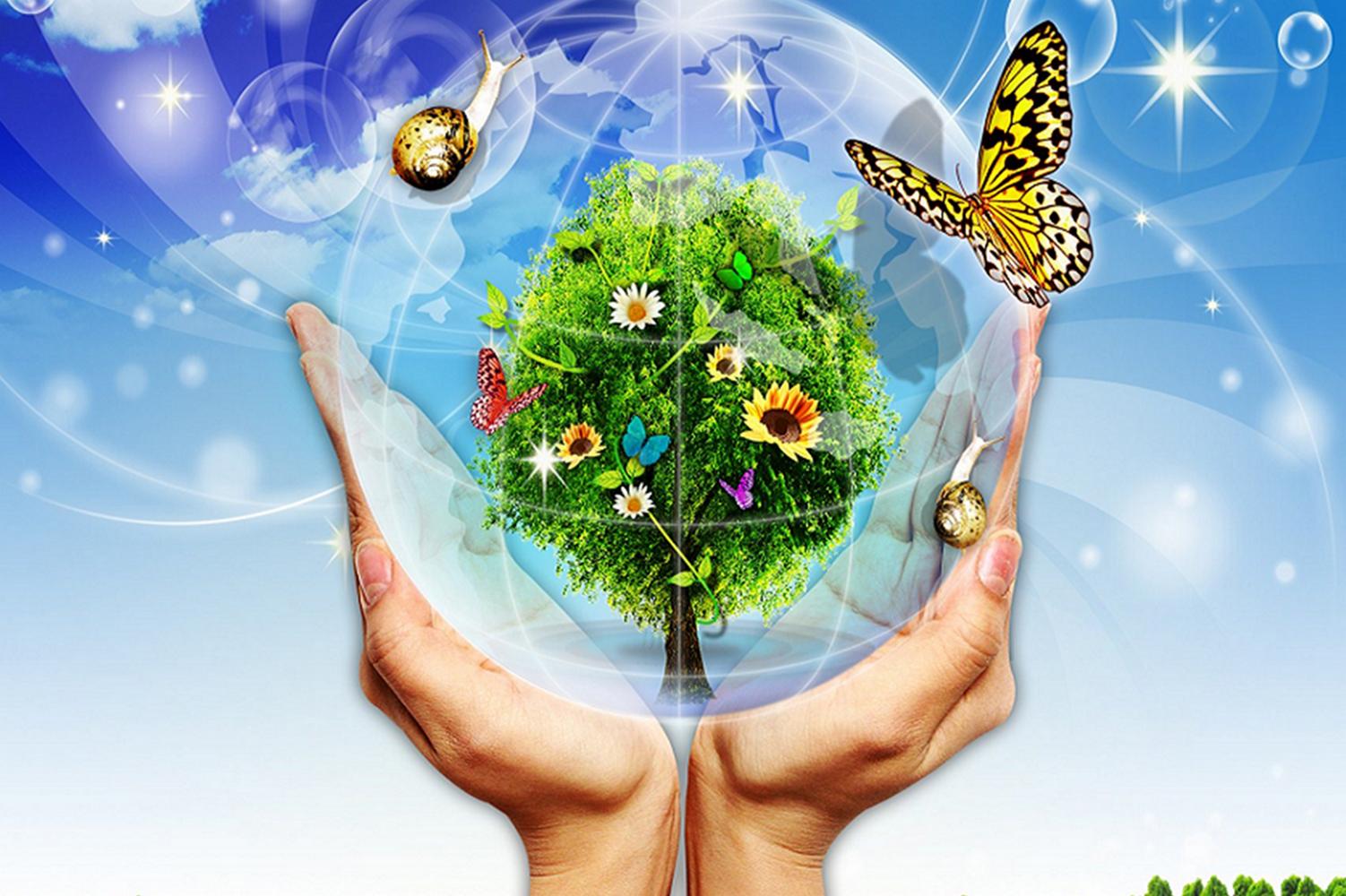 экологическая ситуация