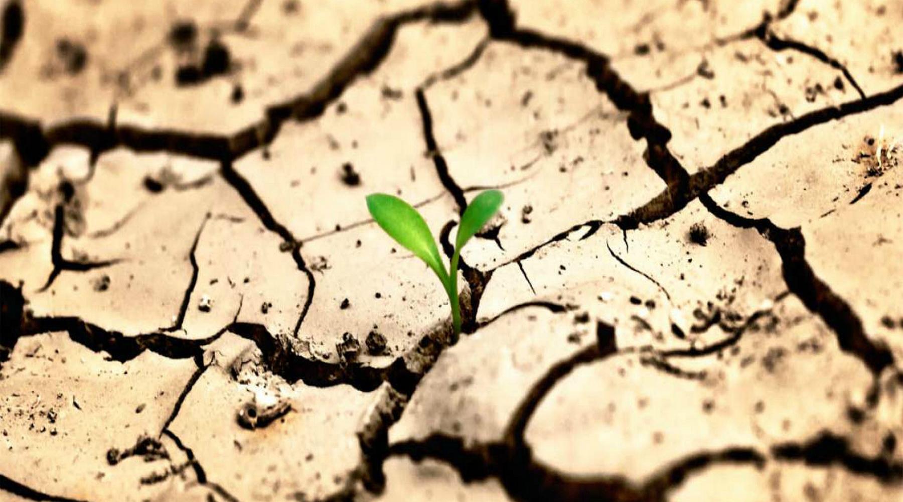 опустынивание земли