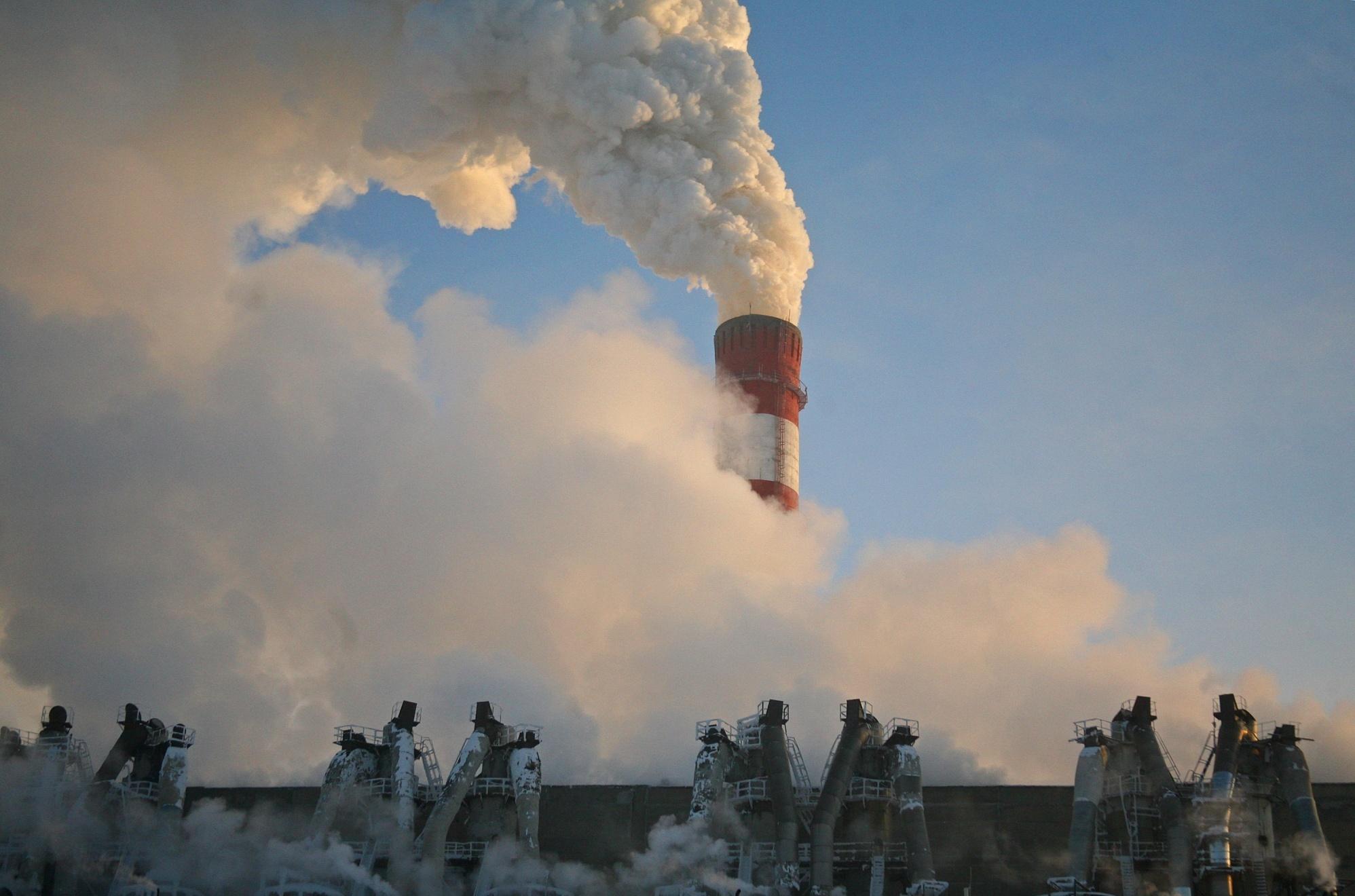 Экологические проблемы Новосибирской области